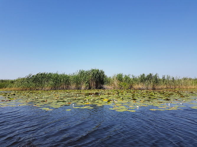 Danube Delta - the land on waters: Tulcea - Crisan - Sulina itinerary