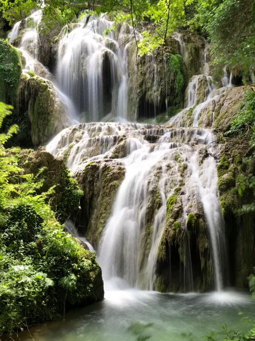 Wilderness and nature in Northern Bulgaria (fifty shades of green)