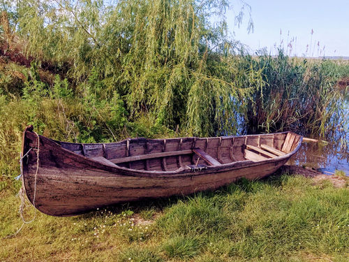 Northern Dobrogea - from Tulcea to Babadag with a little touch of Danube Delta.