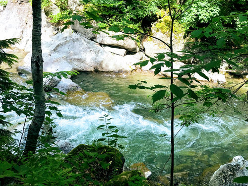Day trip from Bucharest: Tisitei Gorge and Putna Waterfall